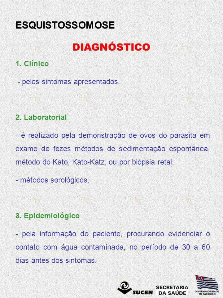 ESQUISTOSSOMOSE DIAGNÓSTICO 1. Clínico - pelos sintomas apresentados. 2. Laboratorial - é realizado pela demonstração de ovos do parasita em exame de
