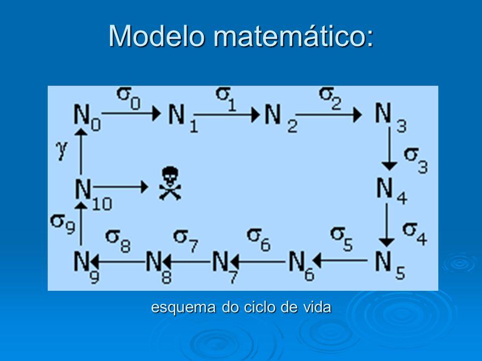 Modelo matemático: equações N 0 ( t+ 1 ) = .N 10 ( t )N 1 ( t+ 1 ) =  0.