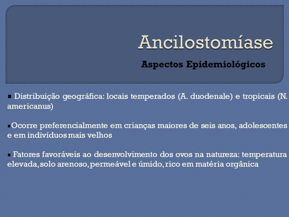 Aspectos Epidemiológicos Distribuição geográfica: locais temperados (A. duodenale) e tropicais (N. americanus) Ocorre preferencialmente em crianças ma