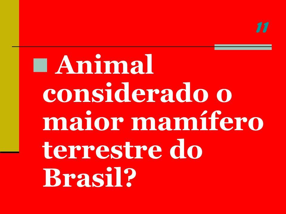 11 Animal considerado o maior mamífero terrestre do Brasil