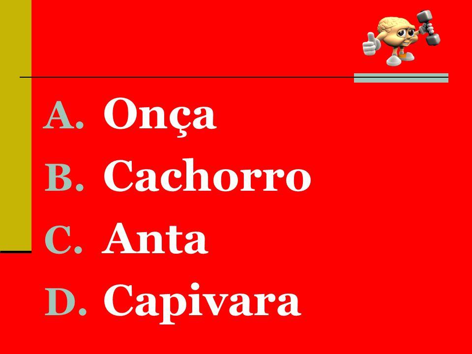 A. Onça B. Cachorro C. Anta D. Capivara