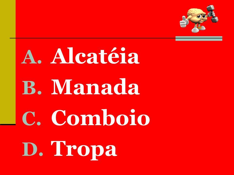 A. Alcatéia B. Manada C. Comboio D. Tropa