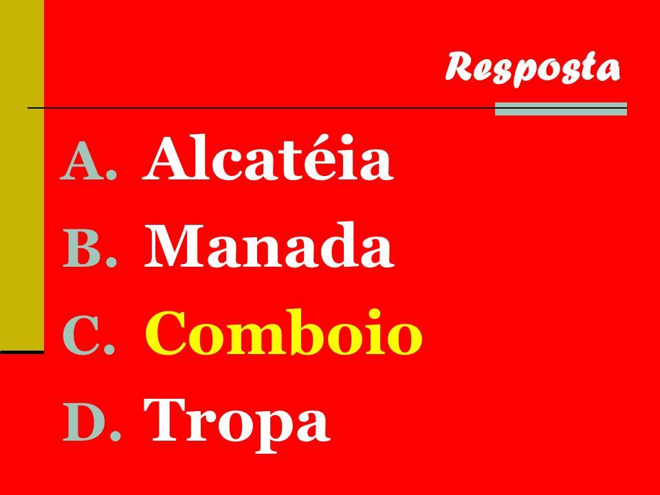 A. Alcatéia B. Manada C. Comboio D. Tropa Resposta