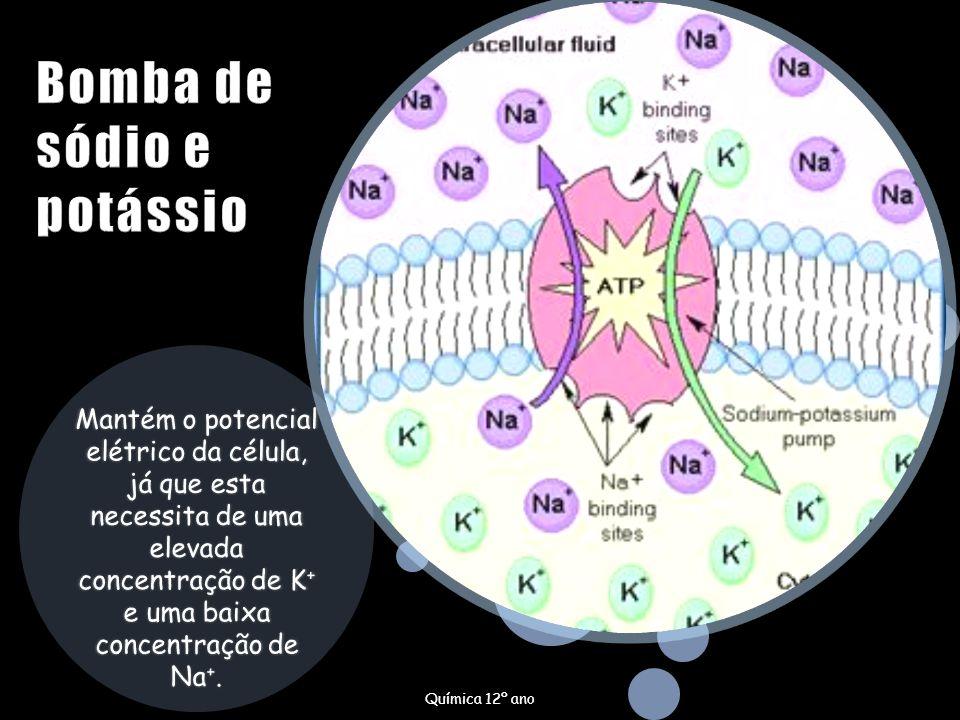 Mantém o potencial elétrico da célula, já que esta necessita de uma elevada concentração de K + e uma baixa concentração de Na +. Química 12º ano