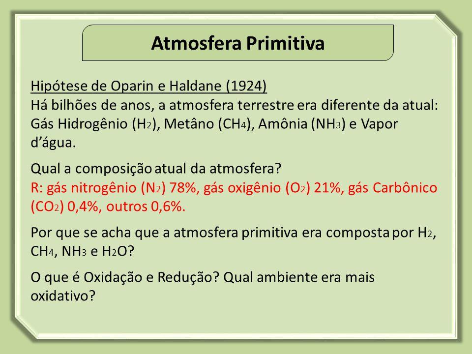 Evolução Química Profº Genilson Lima Graduando em Biologia Colégio Adventista de São Luís – CASL