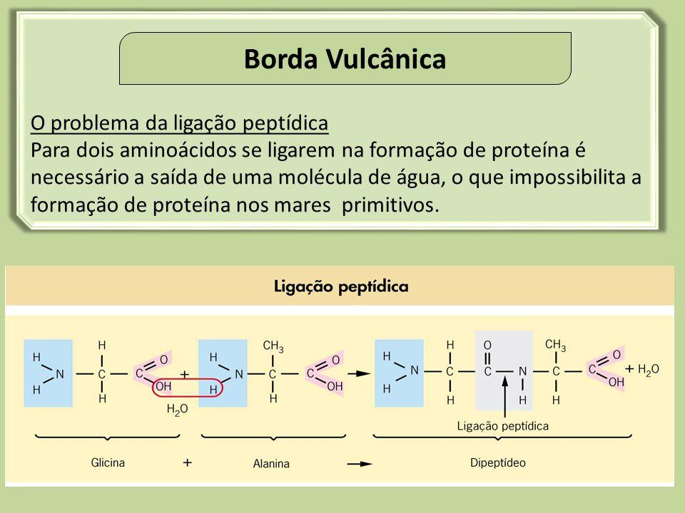 Stanley Miller(1953) Aminoácidos: Glicina e Alanina – rendimento de 2% Ác. Glutâmico e Leucina – menor rendimento. Experimento do Miller