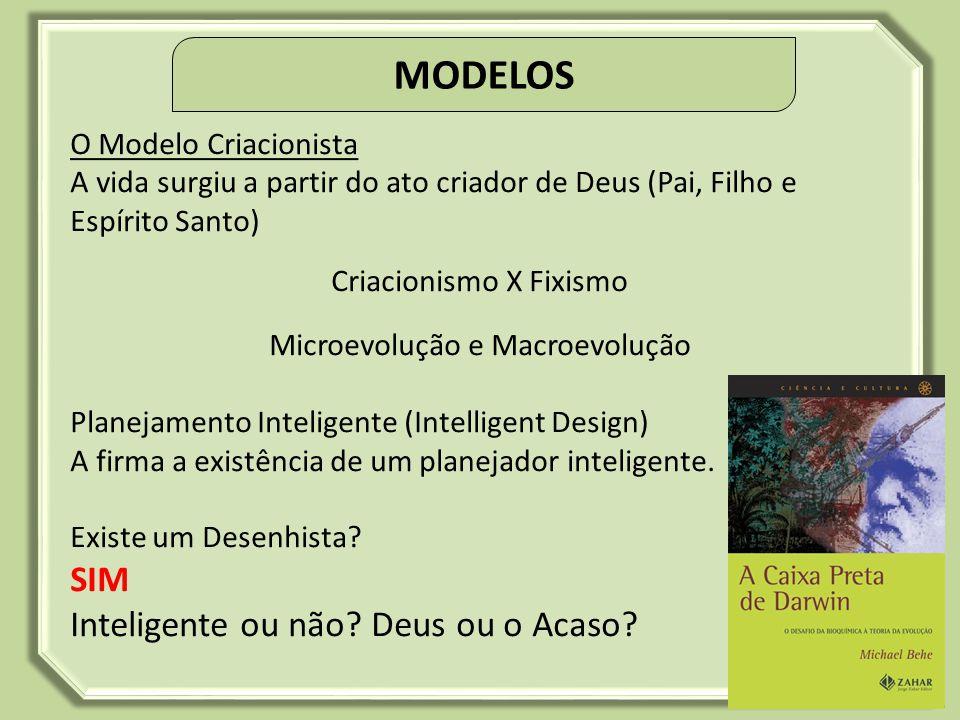 O que é um Modelo? Teoria da complexibilidade: Áreas do conhecimento que estuda a origem da vida. O Modelo Evolucionista A vida surgiu a partir da mat