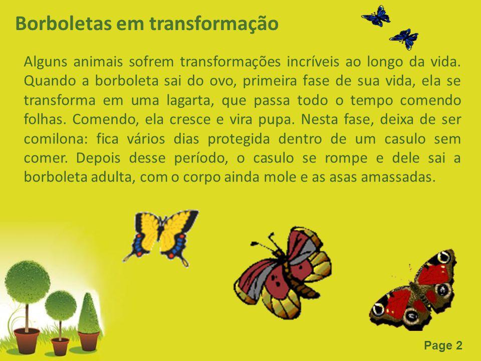 Page 2 Borboletas em transformação Alguns animais sofrem transformações incríveis ao longo da vida. Quando a borboleta sai do ovo, primeira fase de su