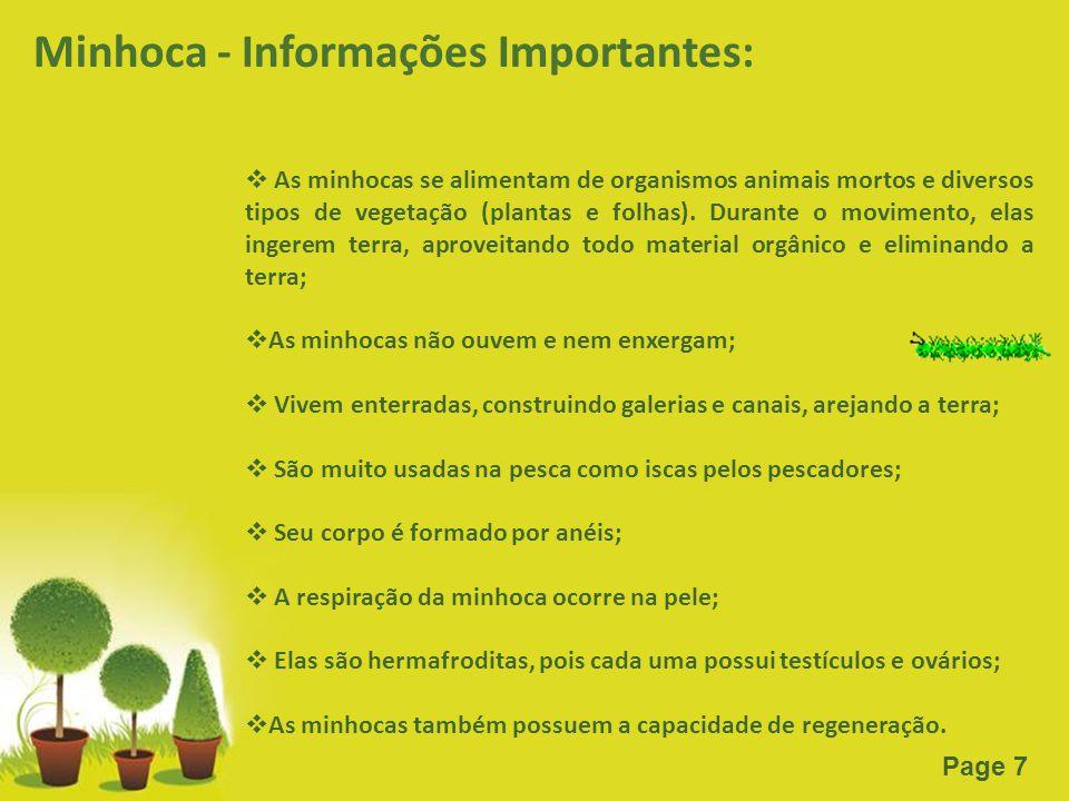 Powerpoint Templates Page 7 Minhoca - Informações Importantes:  As minhocas se alimentam de organismos animais mortos e diversos tipos de vegetação (