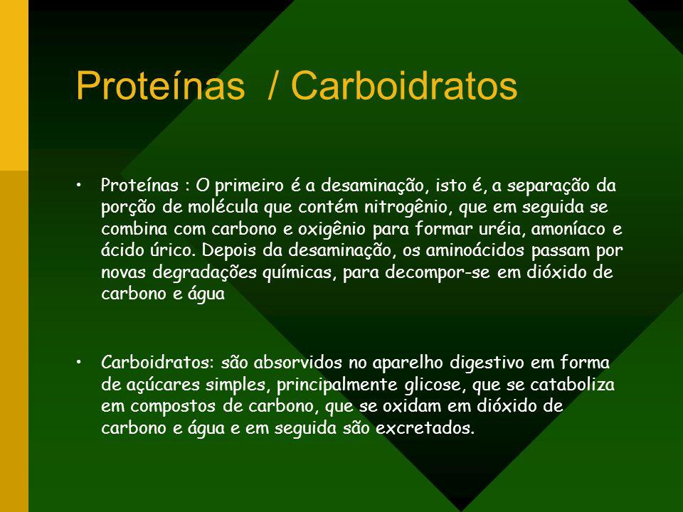 Proteínas / Carboidratos Proteínas : O primeiro é a desaminação, isto é, a separação da porção de molécula que contém nitrogênio, que em seguida se co