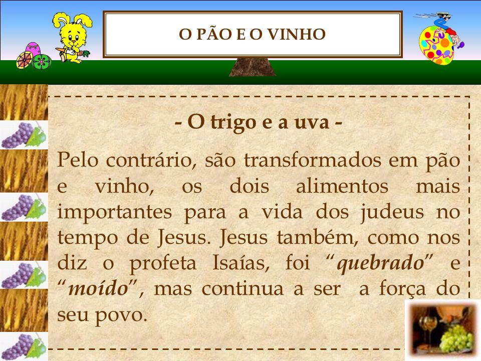 O PÃO E O VINHO - O trigo e a uva – O trigo e a uva são belos símbolos, lembram a total doação de Jesus.
