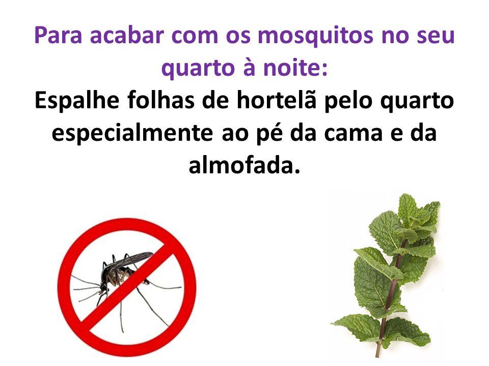 Para acabar com os mosquitos no seu quarto à noite: Espalhe folhas de hortelã pelo quarto especialmente ao pé da cama e da almofada.