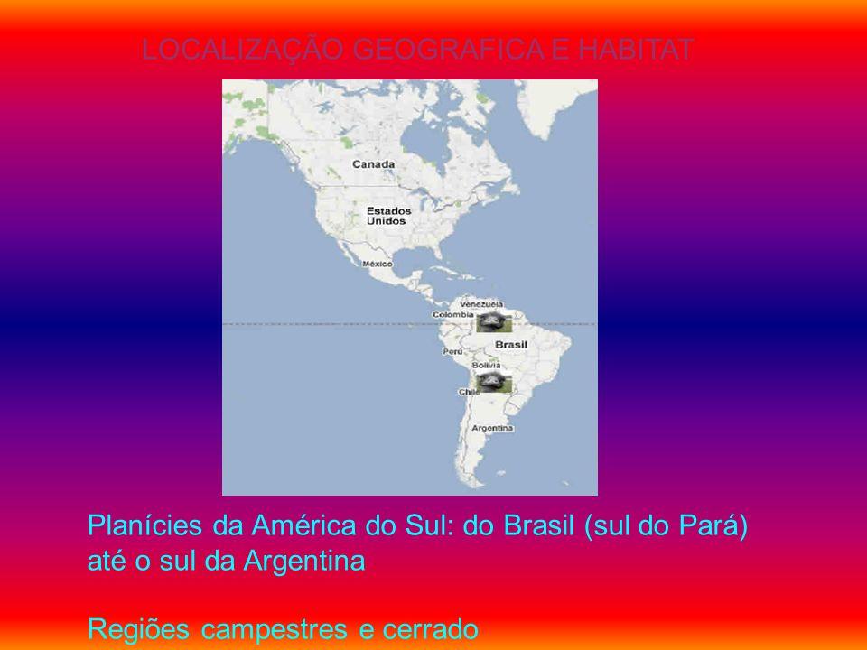 LOCALIZAÇÃO GEOGRAFICA E HABITAT Planícies da América do Sul: do Brasil (sul do Pará) até o sul da Argentina Regiões campestres e cerrado