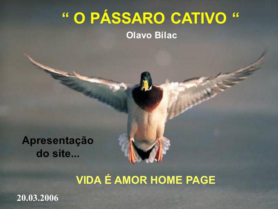 O PÁSSARO CATIVO Olavo Bilac Apresentação do site... VIDA É AMOR HOME PAGE 20.03.2006