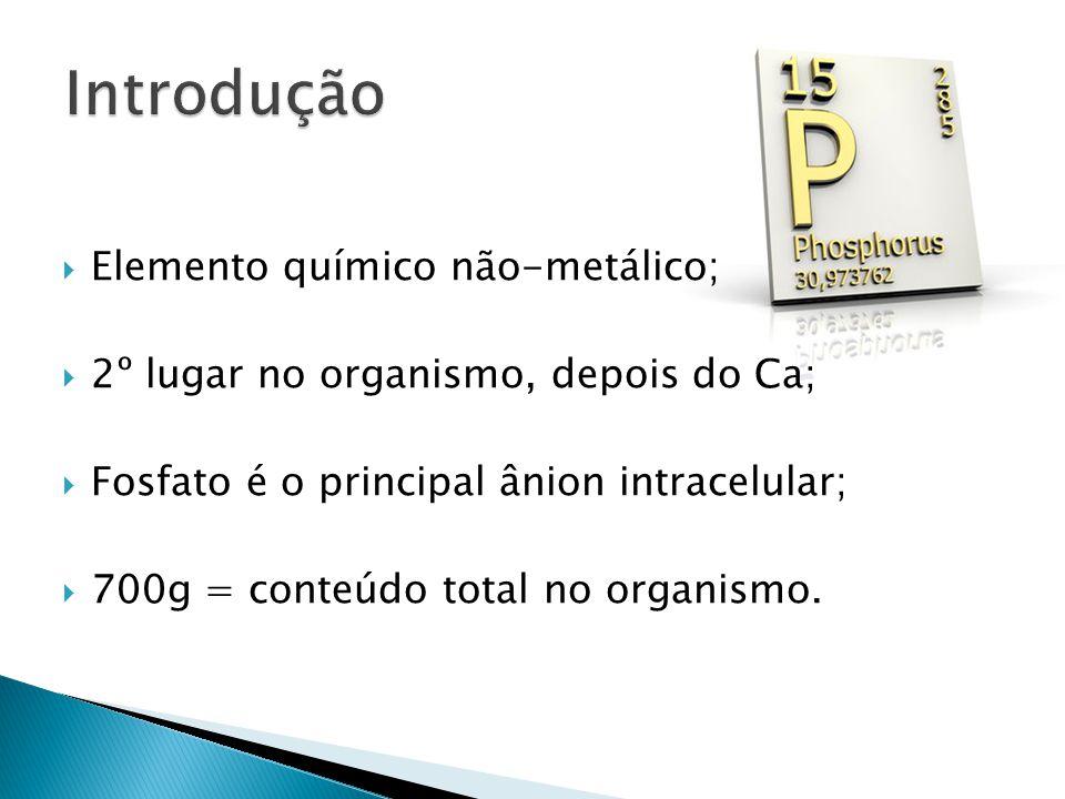  Elemento químico não-metálico;  2º lugar no organismo, depois do Ca;  Fosfato é o principal ânion intracelular;  700g = conteúdo total no organismo.