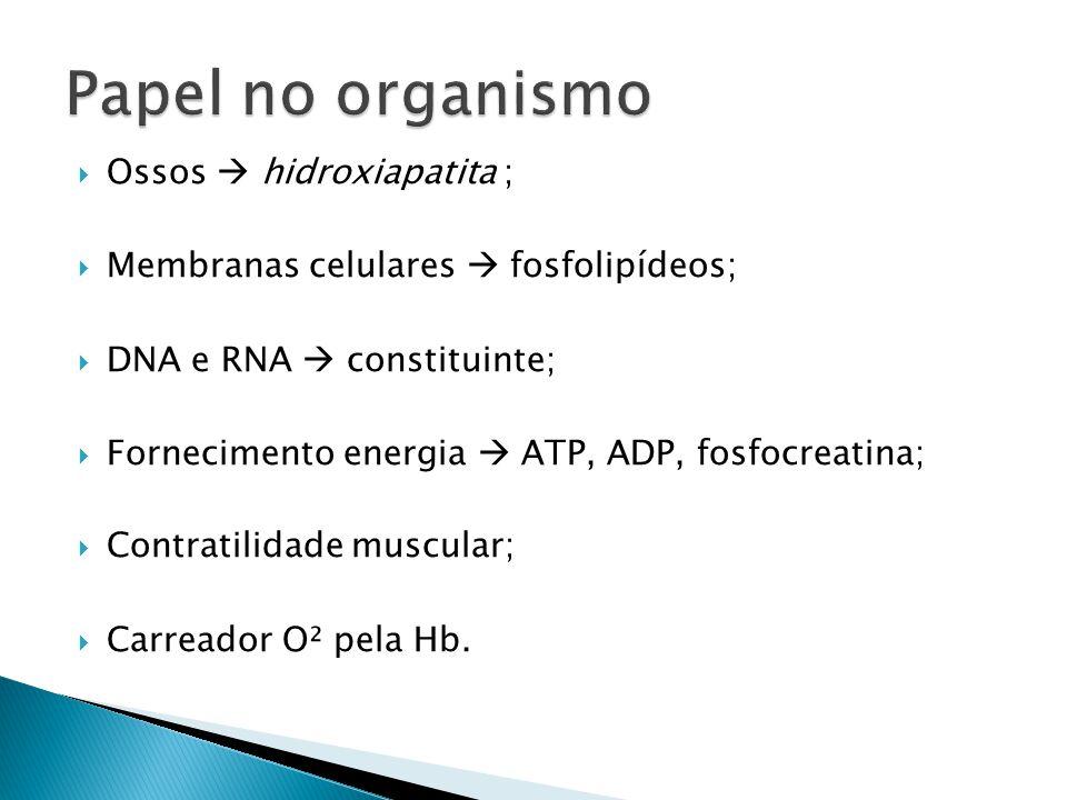  Ossos  hidroxiapatita ;  Membranas celulares  fosfolipídeos;  DNA e RNA  constituinte;  Fornecimento energia  ATP, ADP, fosfocreatina;  Contratilidade muscular;  Carreador O² pela Hb.