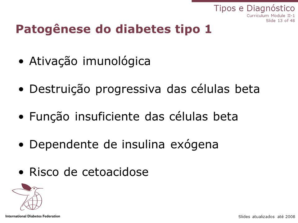 Tipos e Diagnóstico Curriculum Module II-1 Slide 13 of 48 Slides atualizados até 2008 Patogênese do diabetes tipo 1 Ativação imunológica Destruição pr