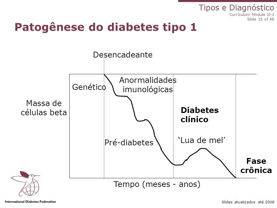 Tipos e Diagnóstico Curriculum Module II-1 Slide 15 of 48 Slides atualizados até 2008 Massa de células beta Patogênese do diabetes tipo 1 Tempo (meses