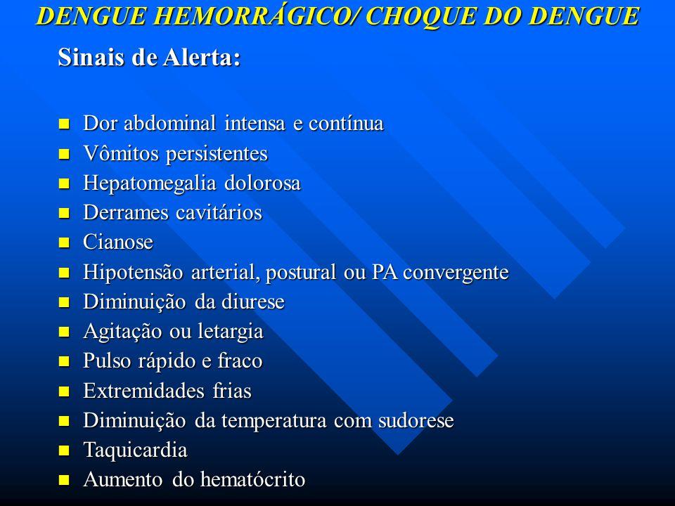 DENGUE HEMORRÁGICO/ CHOQUE DO DENGUE Sinais de Alerta: Dor abdominal intensa e contínua Dor abdominal intensa e contínua Vômitos persistentes Vômitos