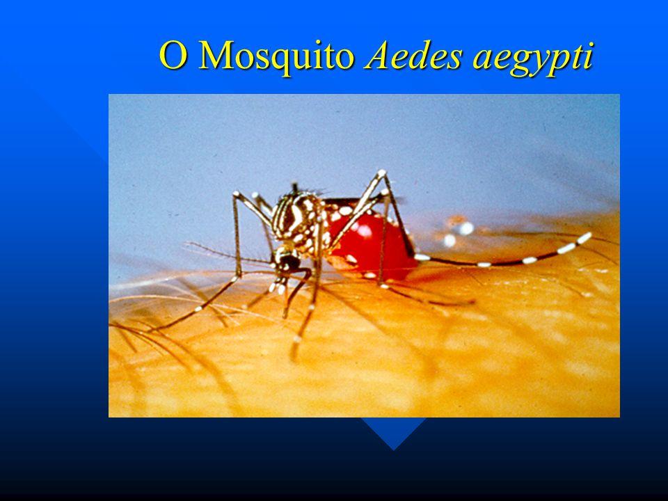 Distribuição do Aedes aegypti no mundo 2002