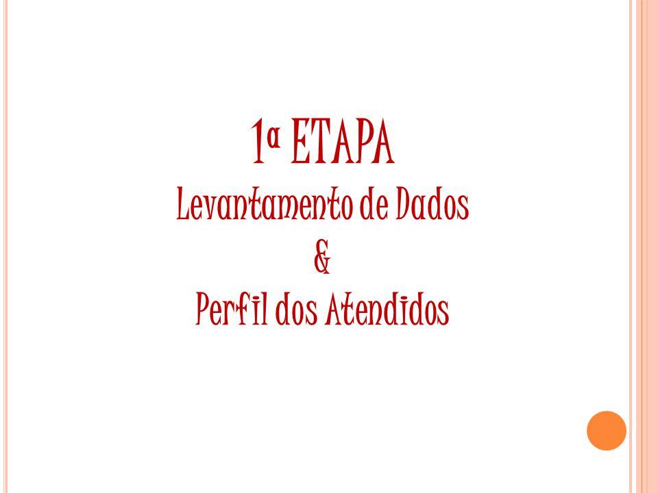 1ª ETAPA Levantamento de Dados & Perfil dos Atendidos