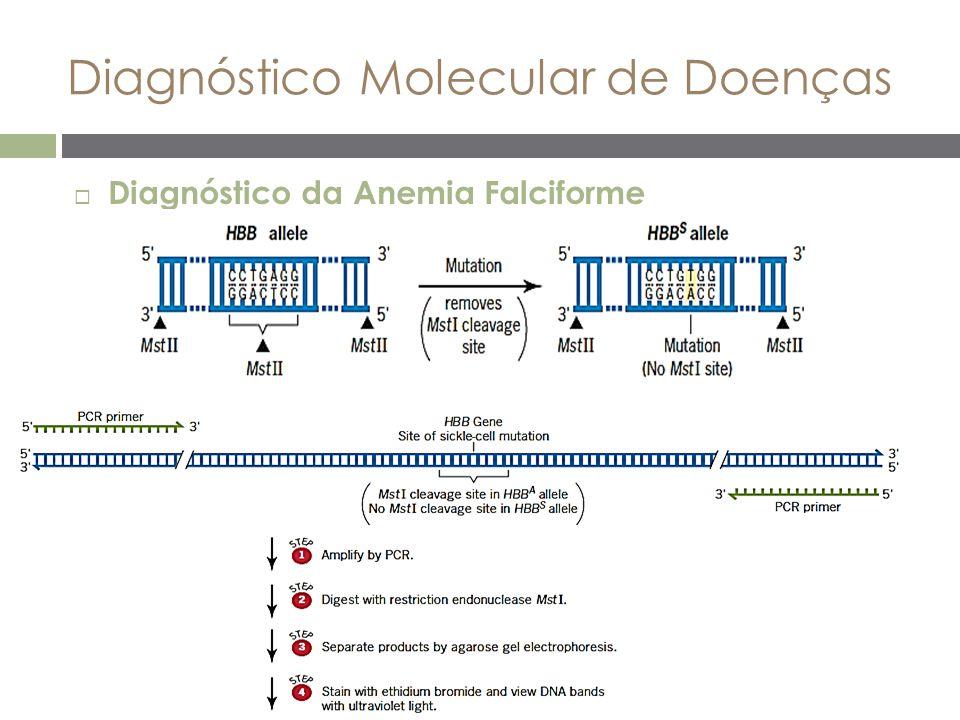 Diagnóstico Molecular de Doenças  Diagnóstico da Anemia Falciforme