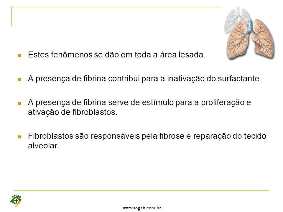 www.sogab.com.br Estes fenômenos se dão em toda a área lesada. A presença de fibrina contribui para a inativação do surfactante. A presença de fibrina