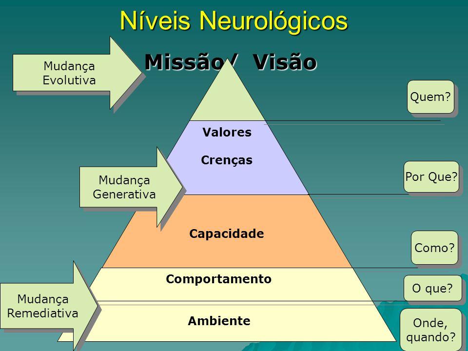 Níveis Neurológicos Missão/ Visão Missão/ Visão Valores Crenças Capacidade Comportamento Ambiente Mudança Remediativa Mudança Remediativa Mudança Gene