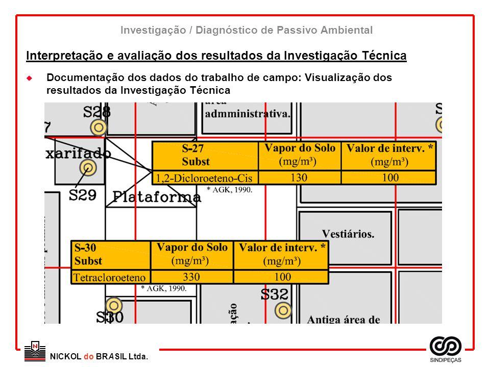 NICKOL do BRASIL Ltda. u Documentação dos dados do trabalho de campo: Visualização dos resultados da Investigação Técnica Interpretação e avaliação do