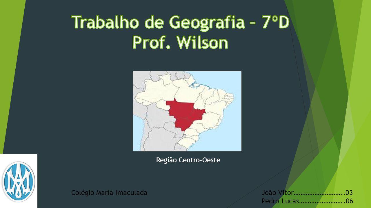  Bacia do rio Paraná Na divisa com os estados de Minas Gerais, São Paulo e Paraná, o Centro-Oeste é banhado pelo rio Paraná e por um de seus formadores, o Rio Paranaíba, no extremo sul de Goiás.