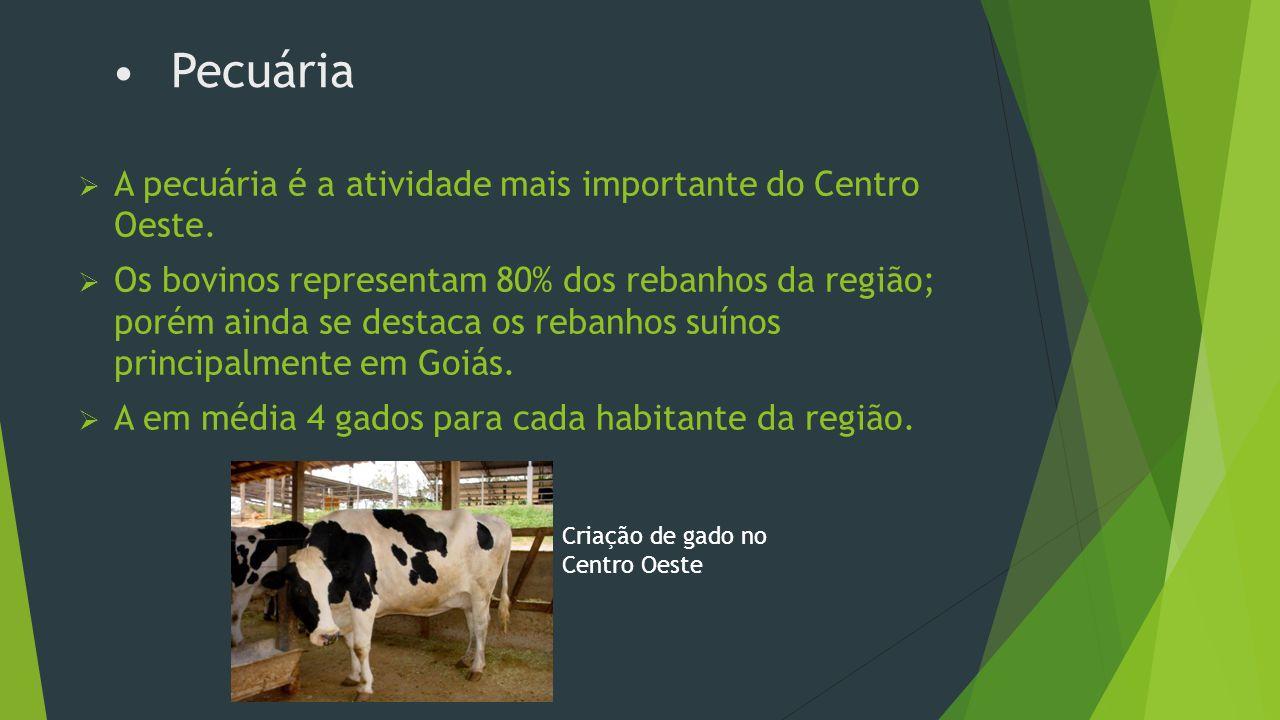 Agricultura  Na região Centro Oeste, a agricultura de subsistência era muito utilizada para completar a pecuária e o extrativismo.