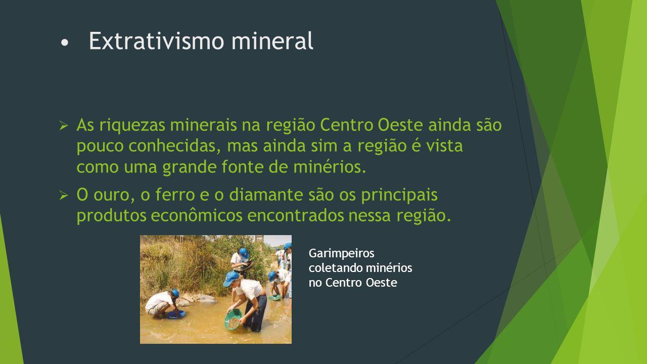 Extrativismo animal  O extrativismo animal é caracterizado pela caça e não é uma importante atividade econômica para a região.