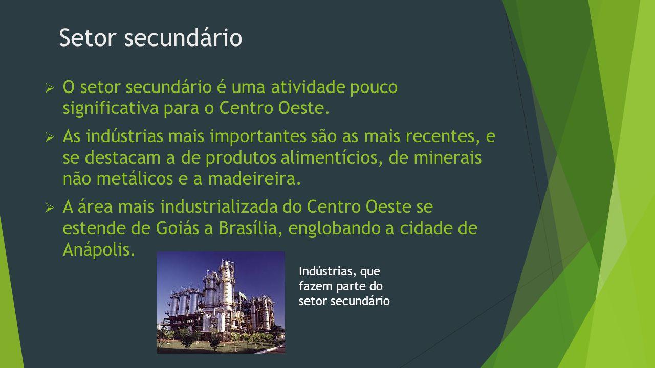 Extrativismo vegetal  O Extrativismo Vegetal é importante principalmente nas áreas longes dos grandes centros urbanos  No Pantanal, o maior aproveitamento é do quebracho, do qual é extraído o tanino, utilizado no curtimento do couro.