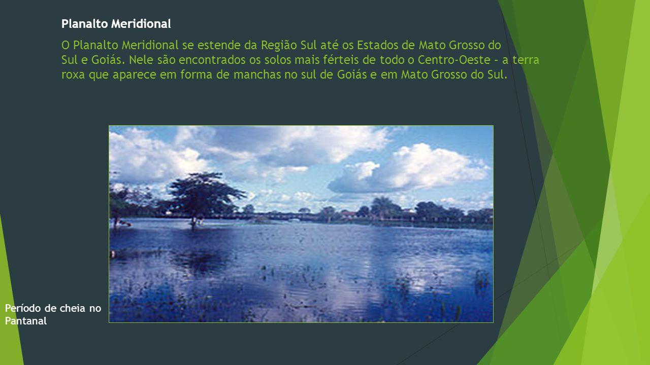 Planalto Meridional O Planalto Meridional se estende da Região Sul até os Estados de Mato Grosso do Sul e Goiás.