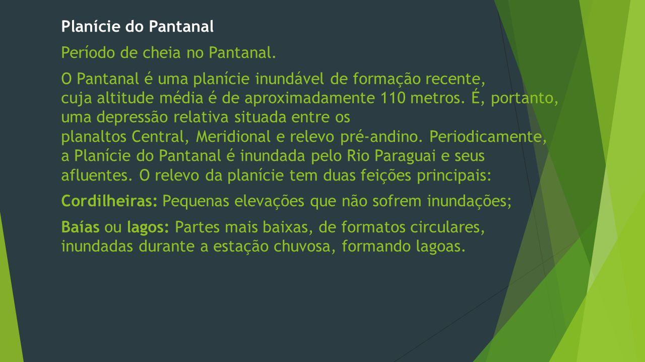 Planície do Pantanal Período de cheia no Pantanal.