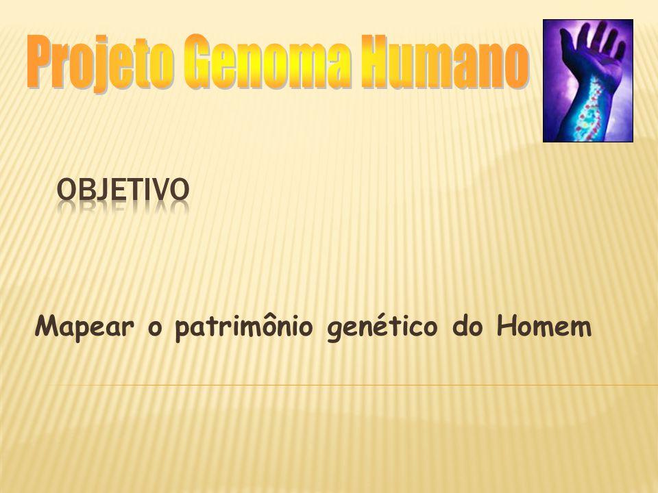  Total de espécies já sequenciadas- 908 (NCBI- fev/2002)  70 genomas bacterianos (13 archae e 57 bact);  695 genomas de vírus, retrovirus, etc;  39 plasmídeos  15 eucariotos  307 organelas Atualmente: dos 70 genomas bacterianos 7 foram feitos através do consórcio e 1 foi brasileiro.