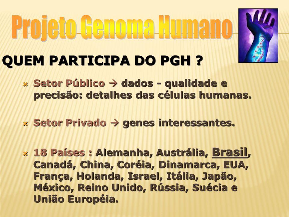 MAPEAMENTO E SEQUENCIAMENTO DO GENOMA GENOMA: DNA  células - determinado organismo.