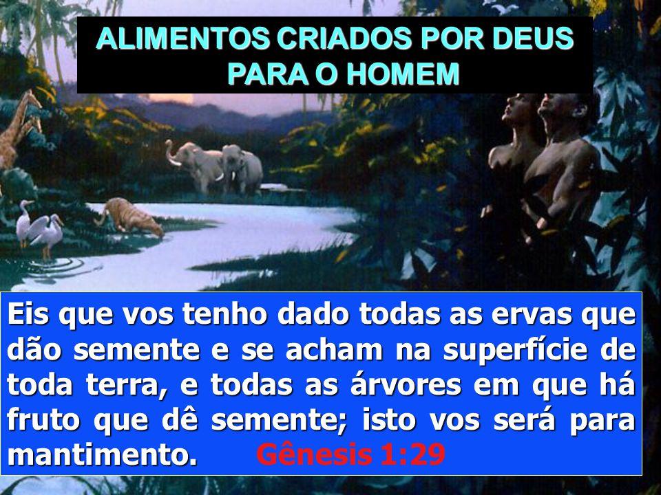 """""""Então foram abertos os olhos de ambos, e conheceram que estavam nus; e coseram folhas de figueira, e fizeram para si aventais. """" Gênesis 3: 1"""