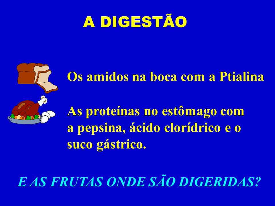 Os amidos na boca com a Ptialina As proteínas no estômago com a pepsina, ácido clorídrico e o suco gástrico.