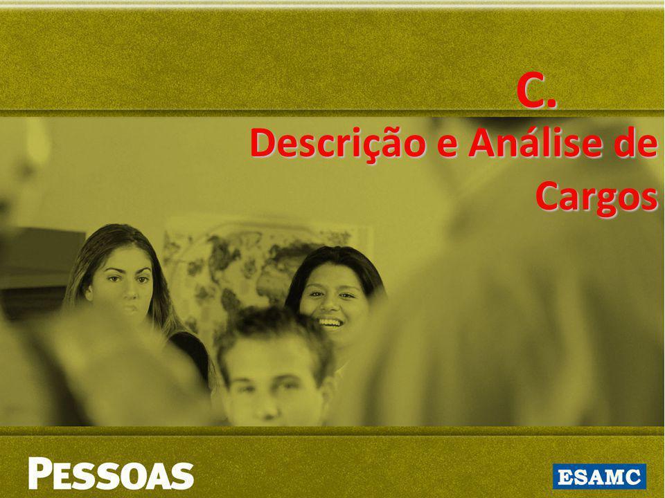 C. Descrição e Análise de Cargos