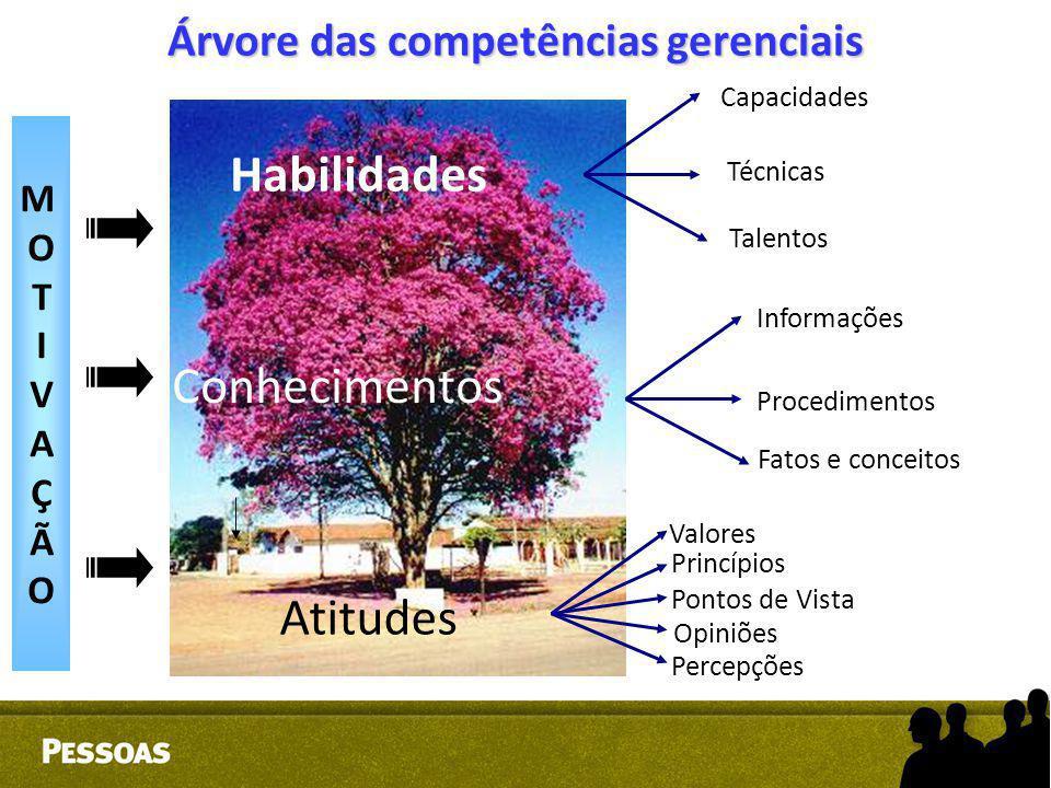 Árvore das competências gerenciais MOTIVAÇÃOMOTIVAÇÃO Habilidades Conhecimentos Atitudes Capacidades Técnicas Talentos Informações Procedimentos Fatos