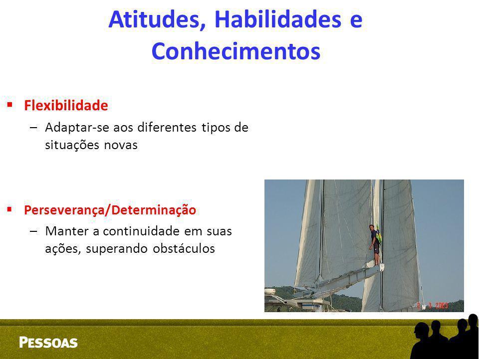  Flexibilidade –Adaptar-se aos diferentes tipos de situações novas  Perseverança/Determinação –Manter a continuidade em suas ações, superando obstác
