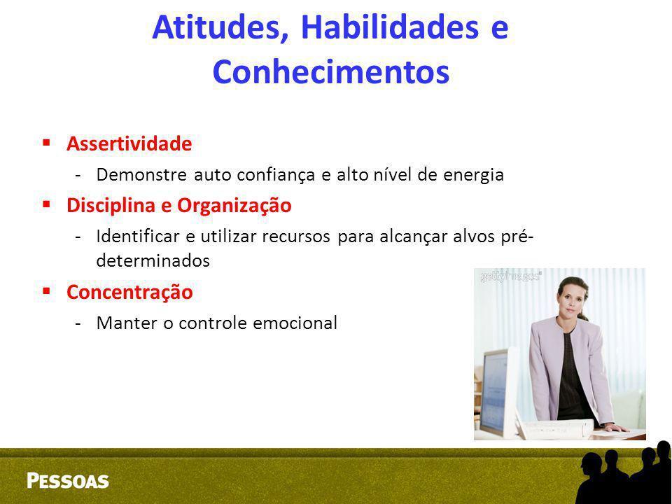  Assertividade -Demonstre auto confiança e alto nível de energia  Disciplina e Organização -Identificar e utilizar recursos para alcançar alvos pré-