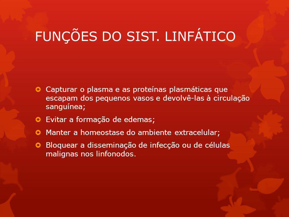 PRESSÃO POSITIVA- CLASSIFICAÇÃO  Unicompartimental  Multicompartimental