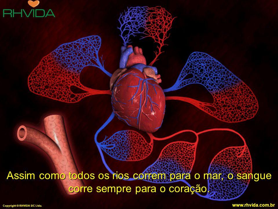 Copyright © RHVIDA S/C Ltda. www.rhvida.com.br Assim como todos os rios correm para o mar, o sangue corre sempre para o coração. Copyright © RHVIDA S/