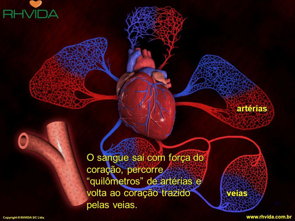 """Copyright © RHVIDA S/C Ltda. www.rhvida.com.br artérias veias 14 O sangue sai com força do coração, percorre """"quilômetros"""" de artérias e volta ao cora"""