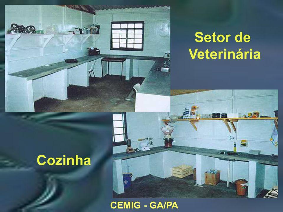 CEMIG - GA/PA Setor de Veterinária Cozinha