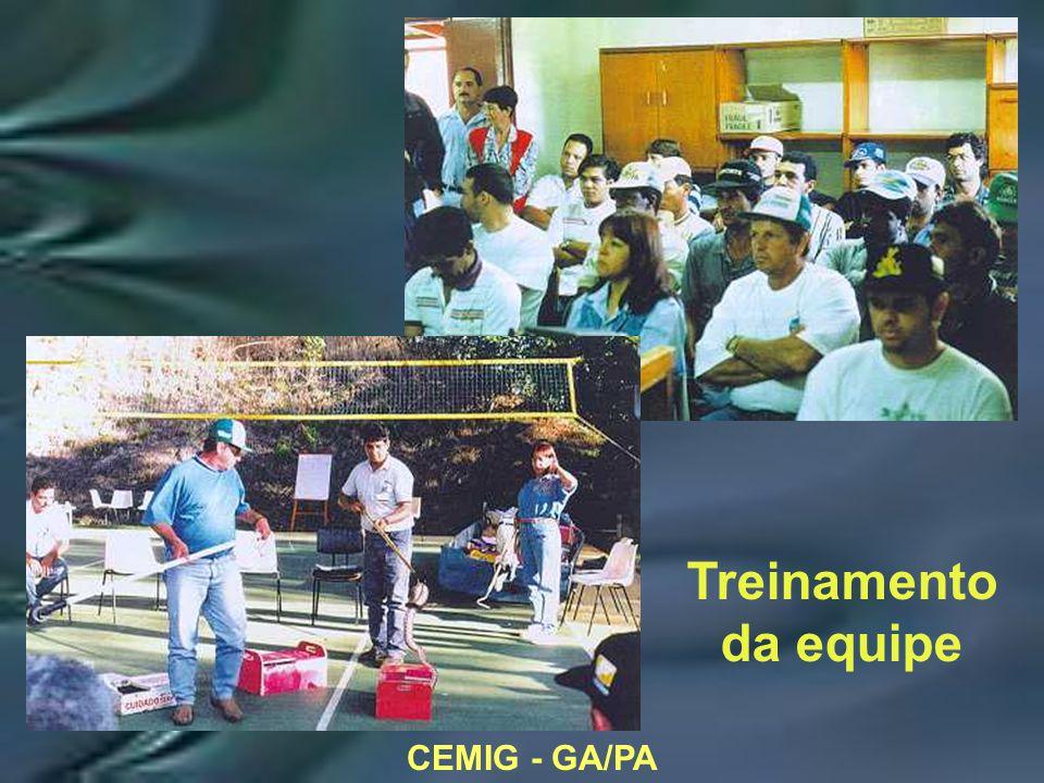 CEMIG - GA/PA Treinamento da equipe