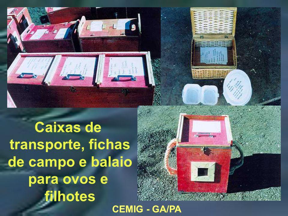 CEMIG - GA/PA Caixas de transporte, fichas de campo e balaio para ovos e filhotes