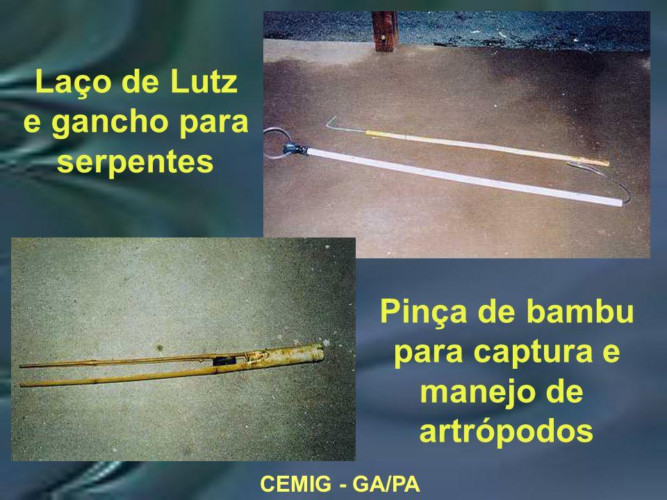 CEMIG - GA/PA Laço de Lutz e gancho para serpentes Pinça de bambu para captura e manejo de artrópodos